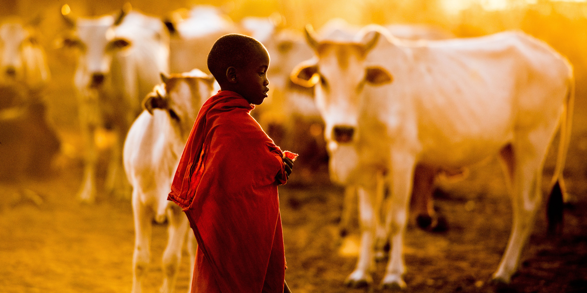 #9. Young boy, cattle herder. 60x120cm