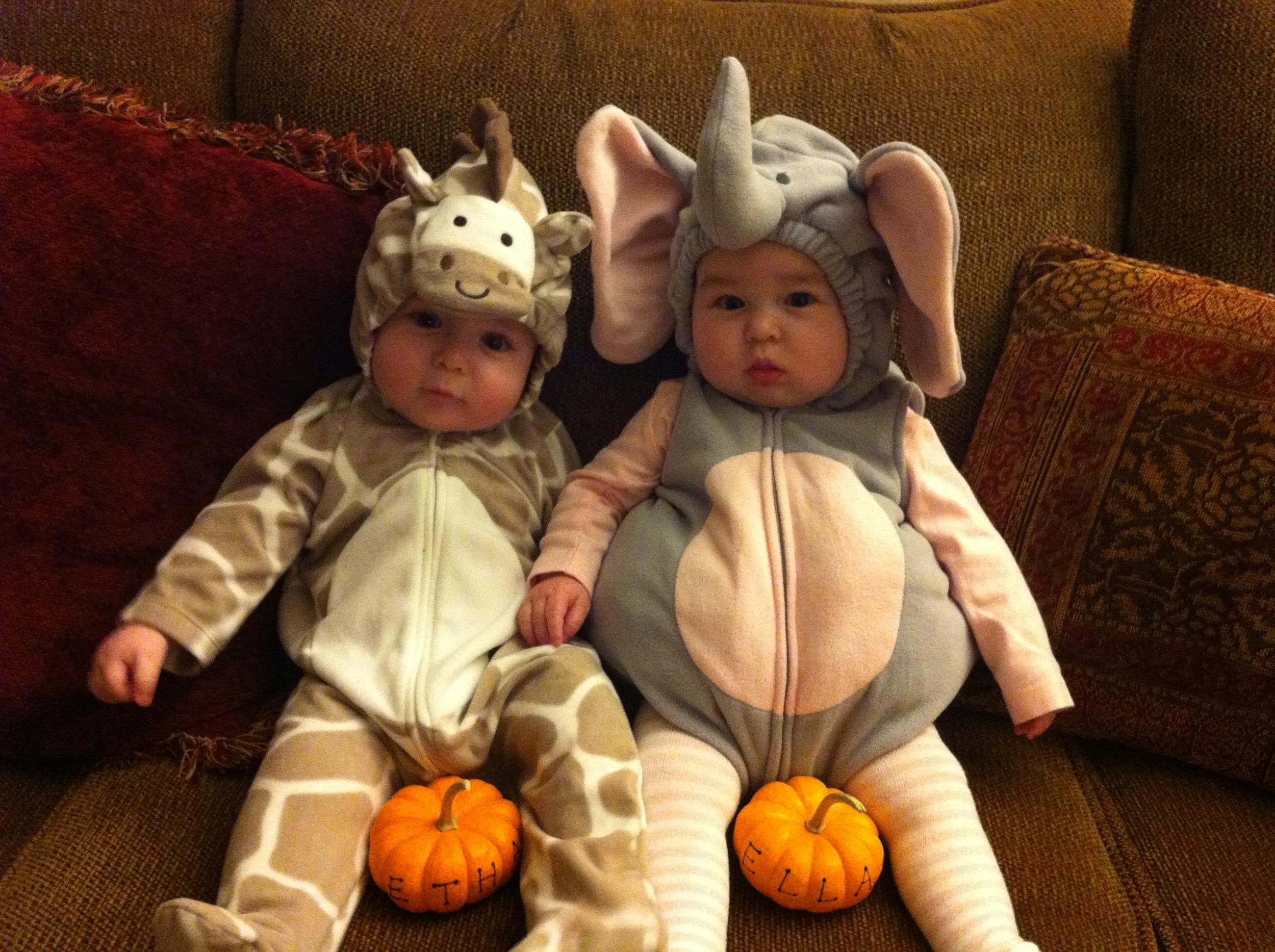 1st Halloween (6 months old)