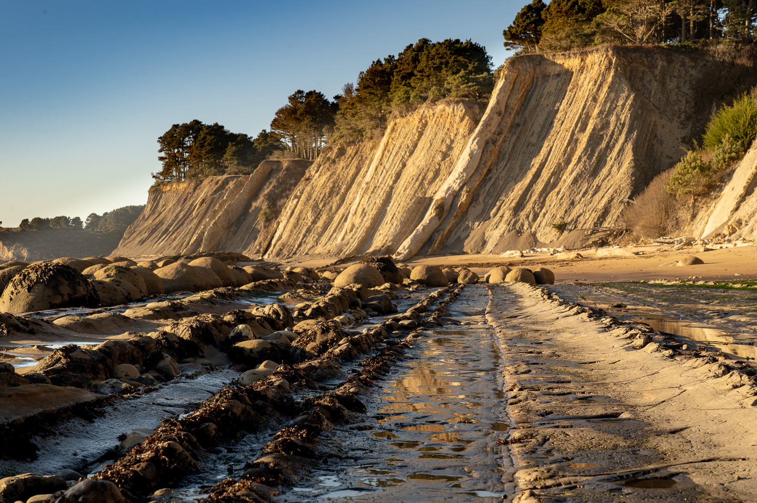Tide out on Bowling Ball Beach, Mendocino Coast