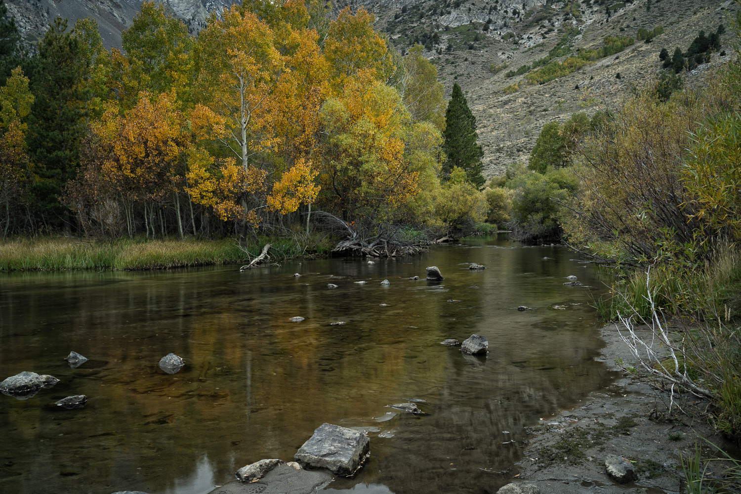 Rush Creek, Eastern Sierra, California