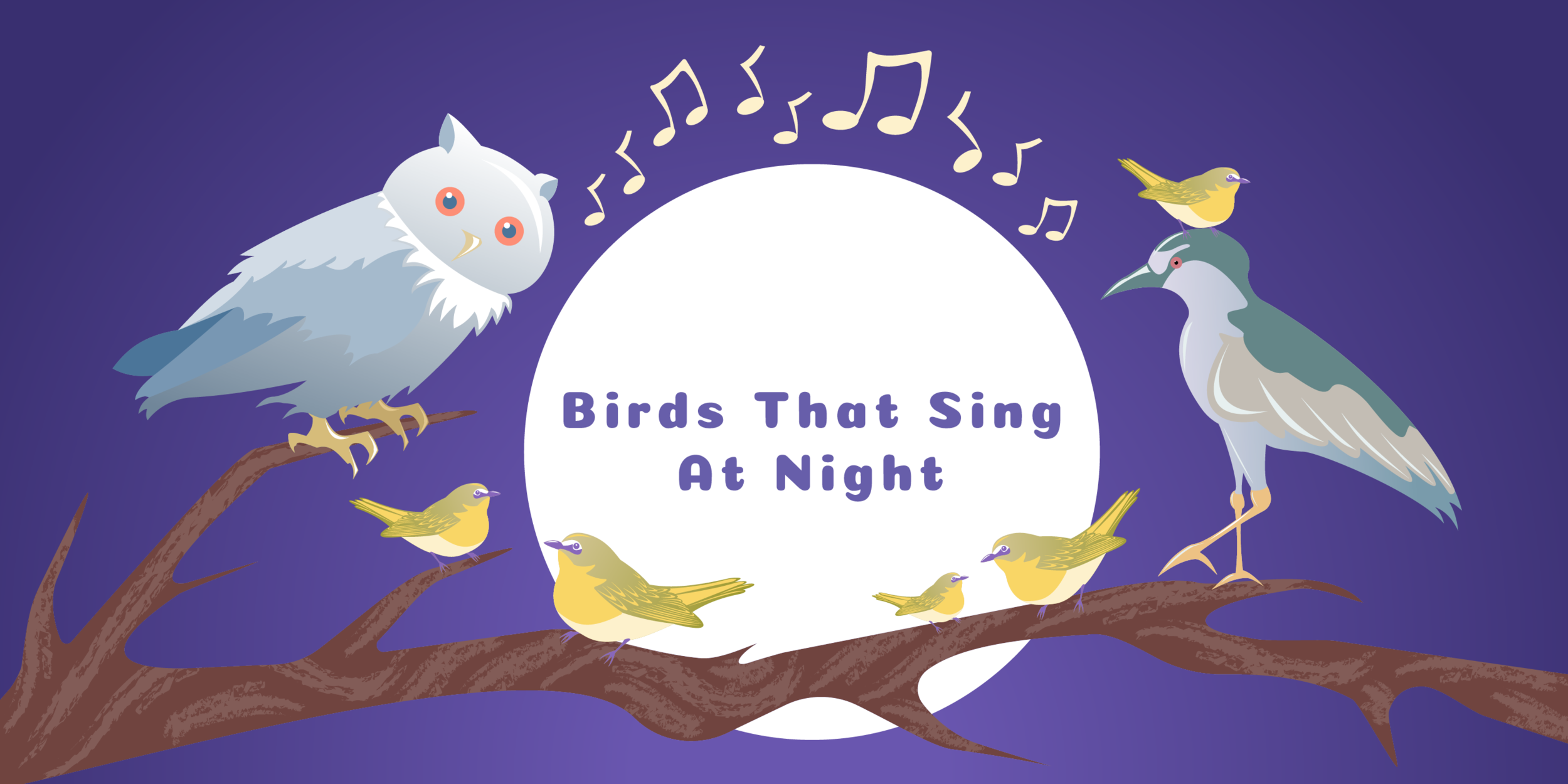 Birds That Sing at Night - 2019   Adobe Illustrator