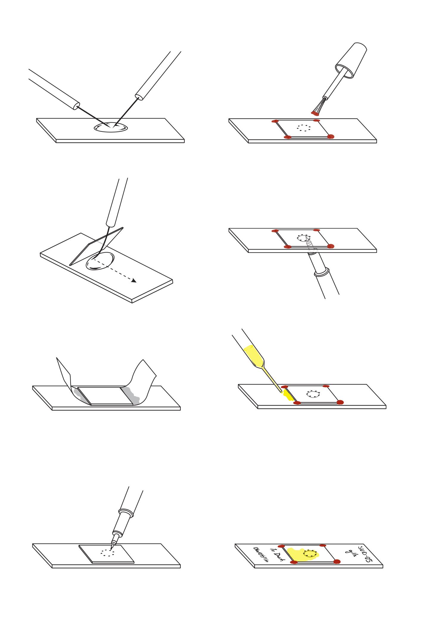 Monogene slide preparation.jpg