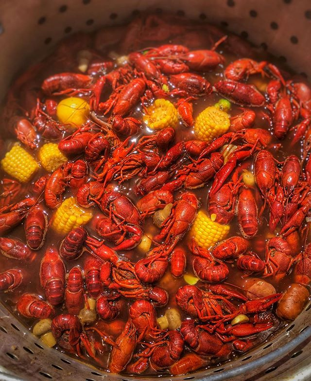 We are #mudbug pros. Let us do your boil! Contact Gather and Forge for your next crawfish boil! . . . .  #privatechef #privatechefaustin #privatechefatx #dinnerpartyatx #dinnerpartypro #personalchefaustin #atxpersonalchef #atxdining #privateevent #privateparty #privatecheflife #gatherandforge #gathertogether #austinluxury #luxuryatx #luxuryhomes #luxurydinner #supperclubatx #secretsupper #supperclubaustin #austinsupperclub #plating #austintexas #atx #austinbacheloretteparty #personalchef #privatedining #athomechef
