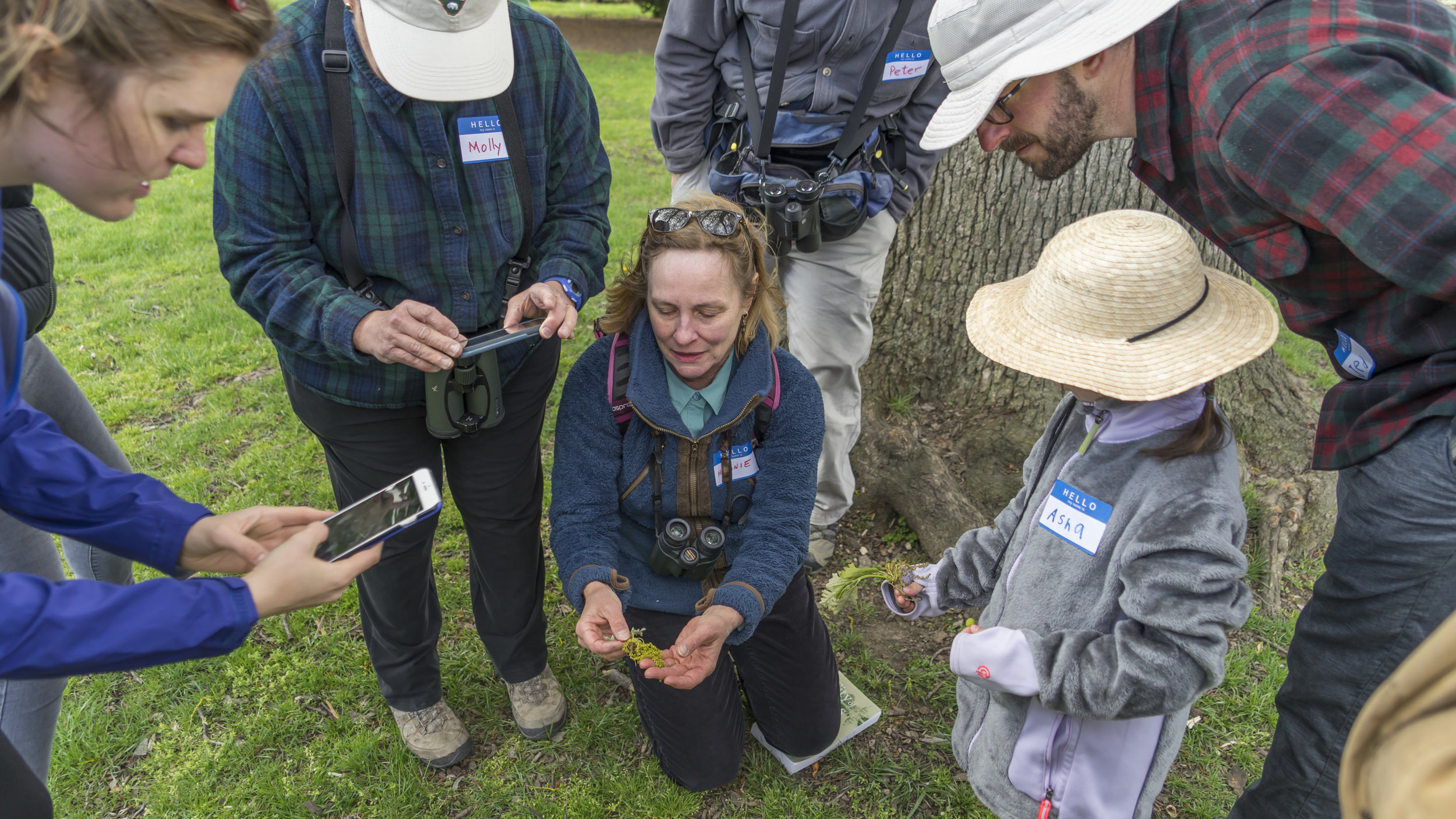 Local naturalist and author Melanie Choukas-Bradley demonstrates tree identification to local citizen scientists adding City Nature Challenge observations to the global iNaturalist database. (Photo: Ana Ka'ahanui)