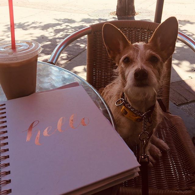 Journal and coffee with my BFF! 🥰