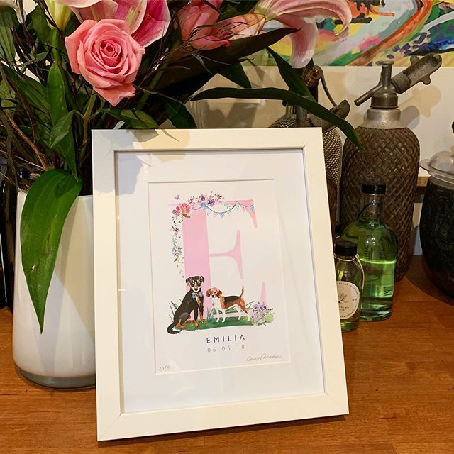 Did you know there's a breed of dog called a Huntaway (I had no idea) Little Emilia received a Huntaway & Beagle combo for her first birthday this year and I had lots of fun drawing her gorgeous doggies. . . . #petartist #catart #dogart #babyshower #babypresents #babygifts #nurserydecor #nurseryart #ilovetamworth #supportlocal #ruralladystartup #watercolour #watercolourillustration #huntaway #beagle