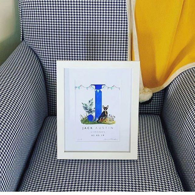 Clever granny had the armchair re-upholstered to match her grandson's nursery art 😉. Looks great @scurtin . . . . #petartist #dogart #babyshower #babypresents #babygifts #nurserydecor #nurseryart #ilovetamworth #supportlocal #ruralladystartup #watercolour #watercolourillustration #kelpie #australiankelpie