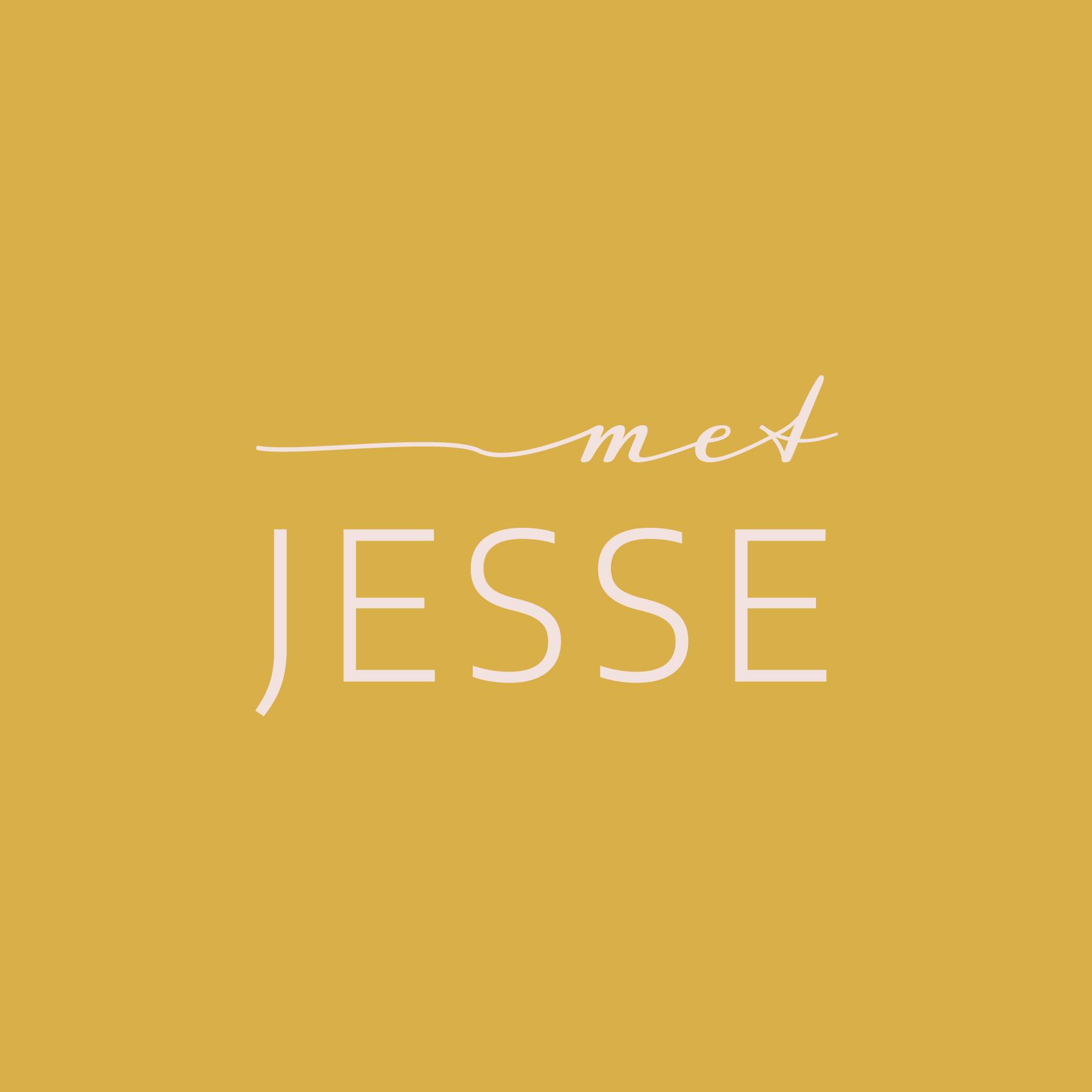 Logo Met jesse melanie velghe illyvanilly 1 RGB 72 ppi.jpg