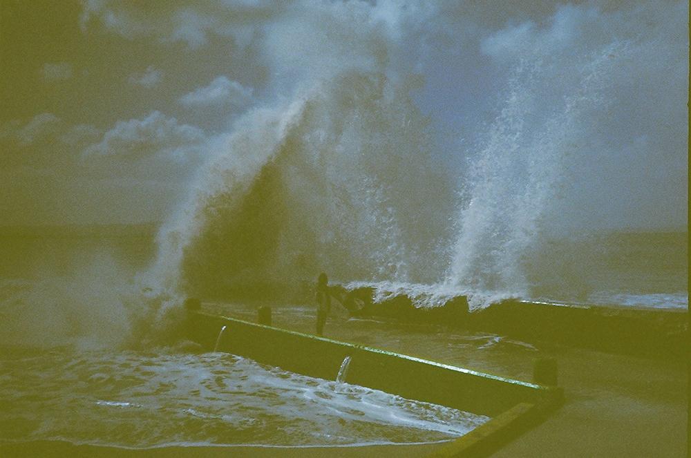 surferweb.jpg
