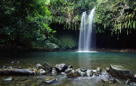 Image via hawaiiactive.com