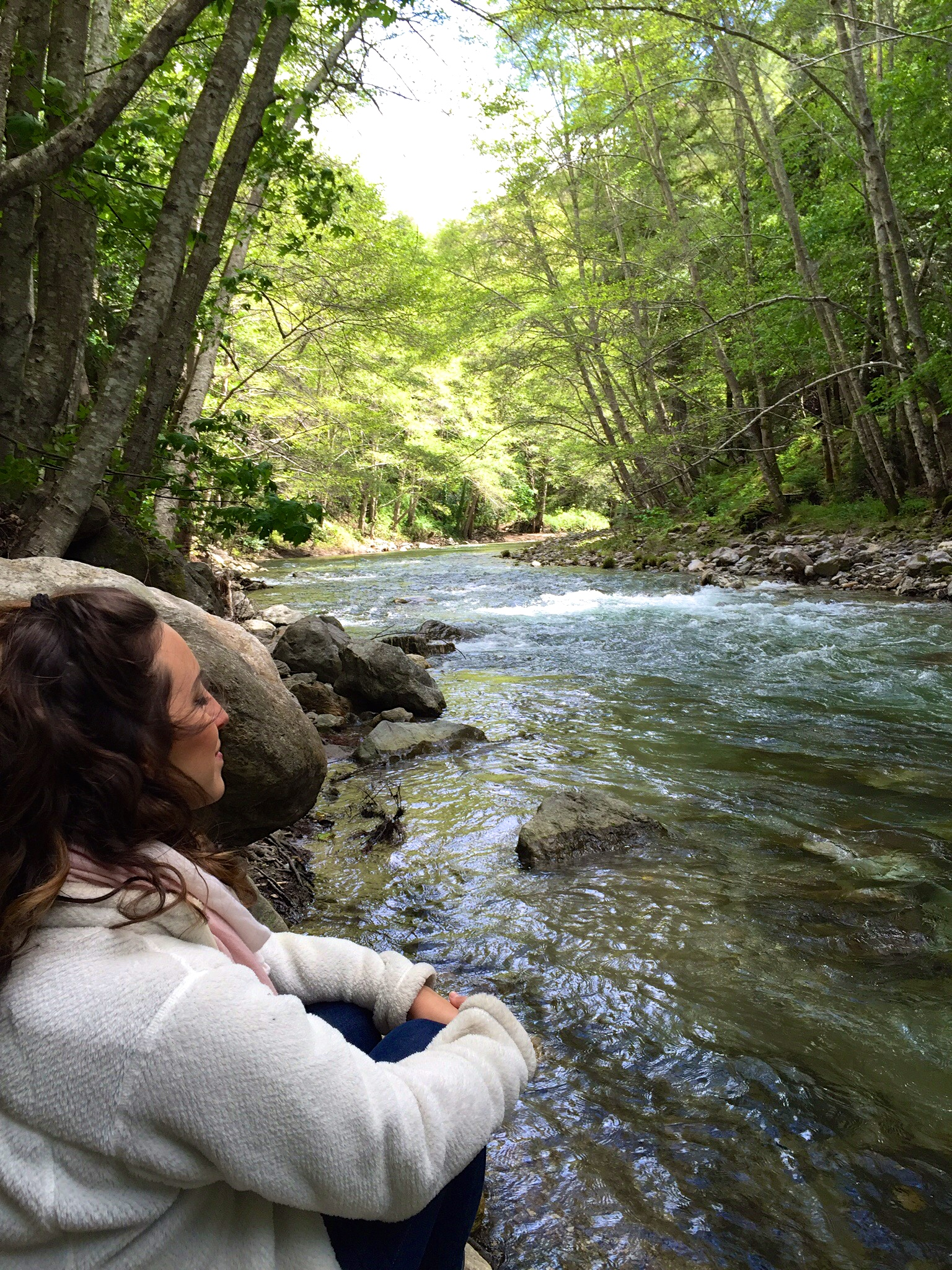 Glen Oaks Big Sur River