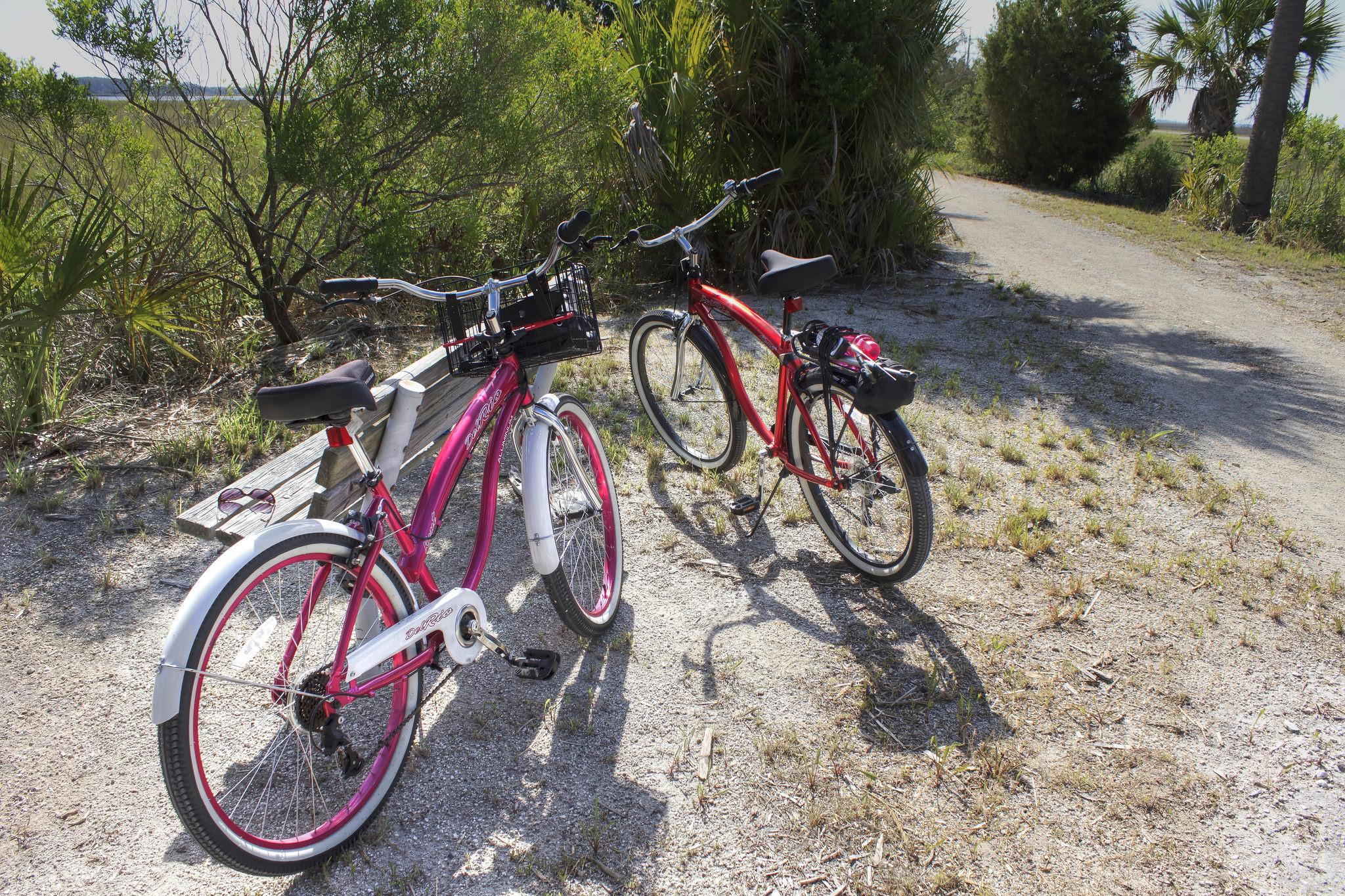 Renting bikes in Tybee