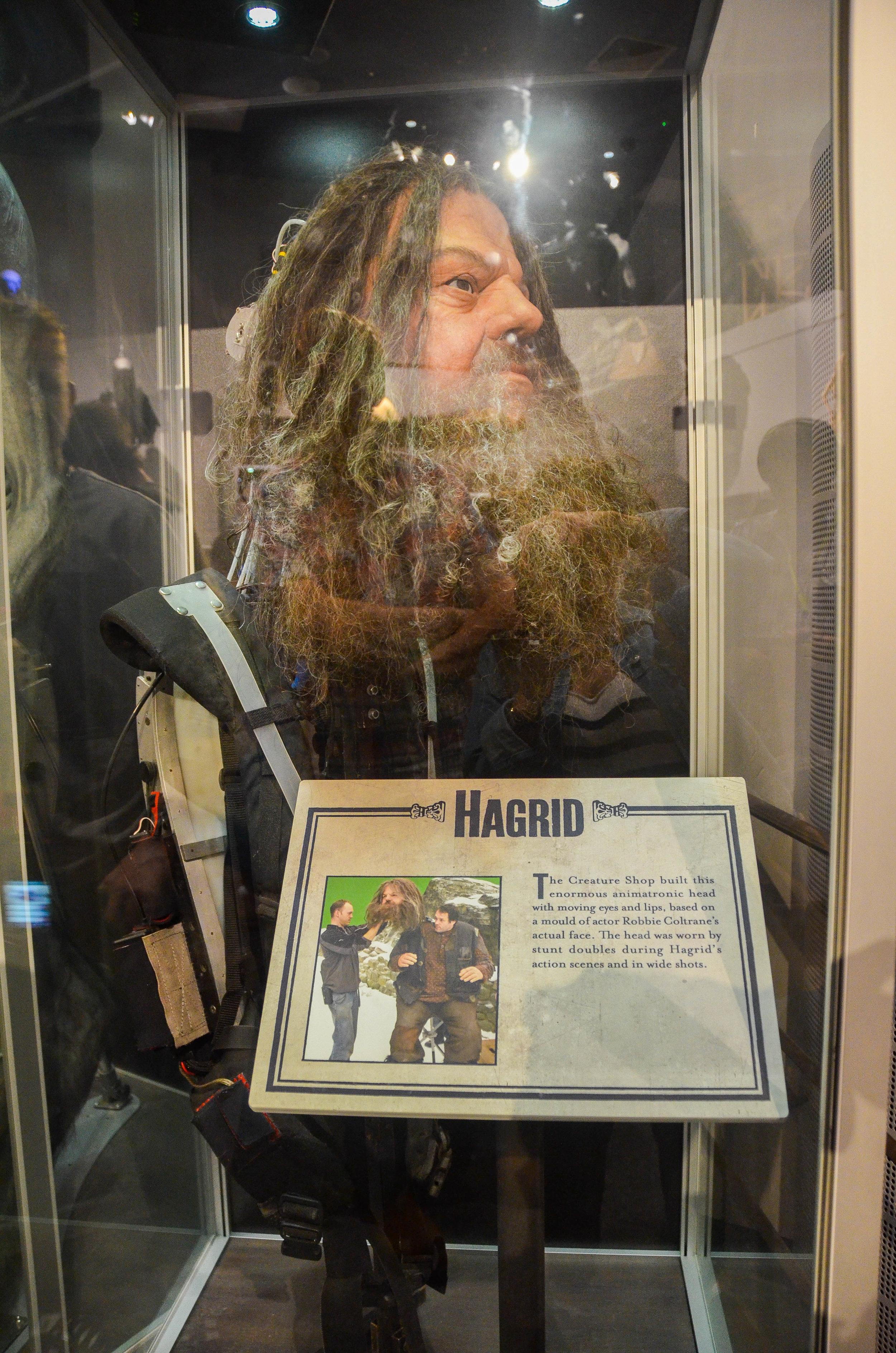 Hagrid.jpg