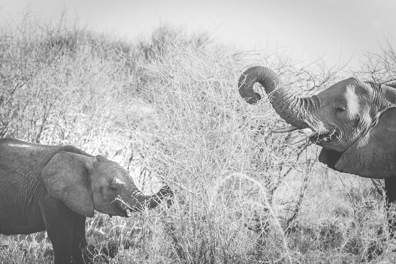 Namibiablog-24.jpg