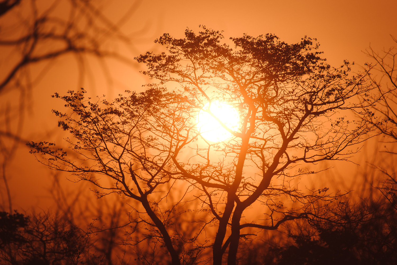 Namibiablog-45.jpg