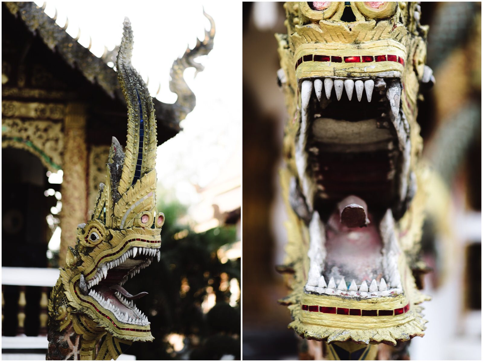 thaiblog2017-8-KOLL.jpg