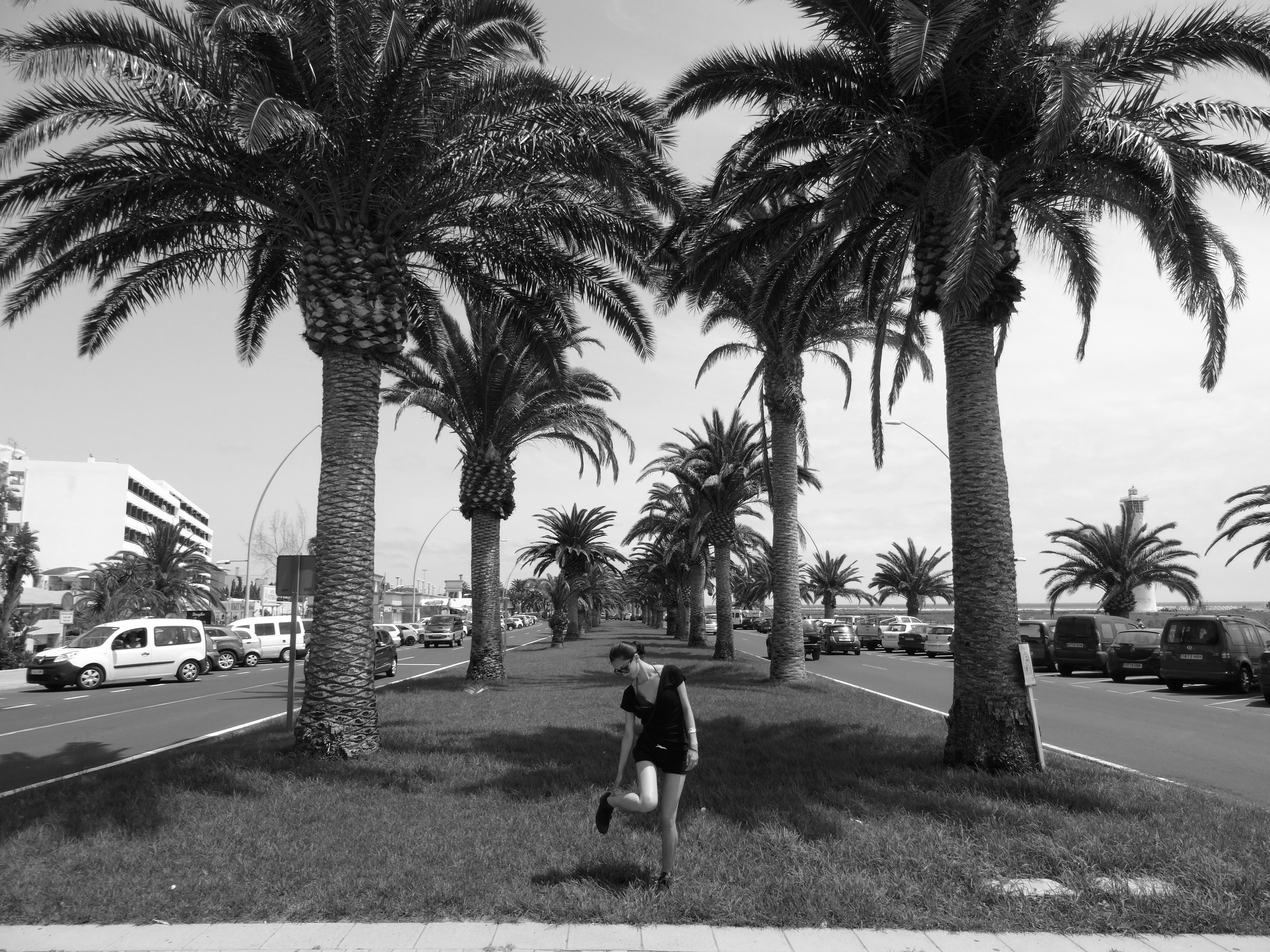 31.Aug 2015 : Unter großen Palmen