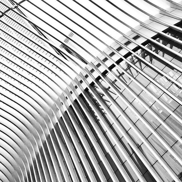 #santiagocalatrava  #architecture #nyc
