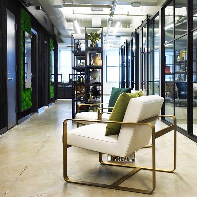 Midtown Office Project /#Corridor #officeinteriors #greenwalls @plantwalldesign