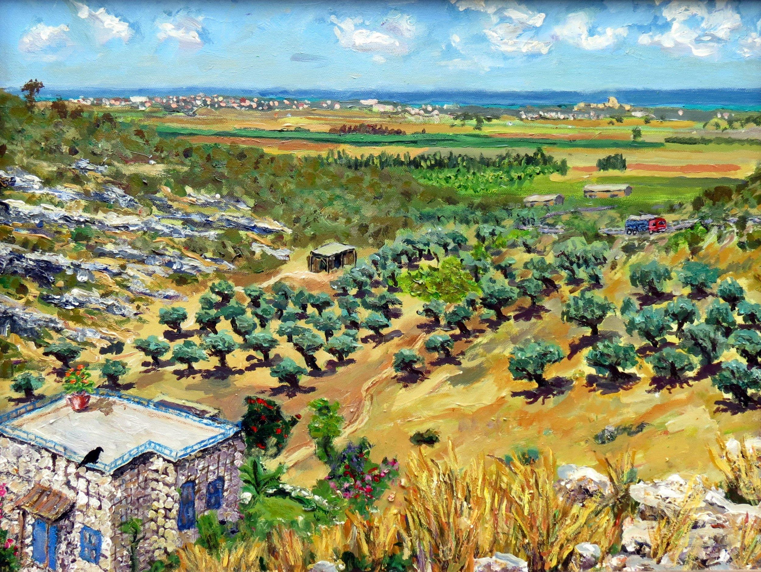View from Ein Hod