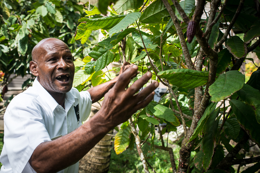 Our tour guide,Cuthbert Monroque, at Hotel Chocolat.Photo by Jenny Sathngam.