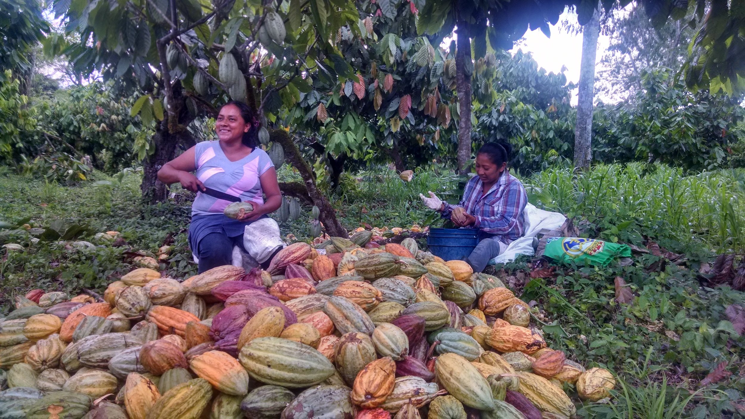 Cacao farmers Dina Ladena and Rosalva Ventura in Belize, photo by Taza Chocolate