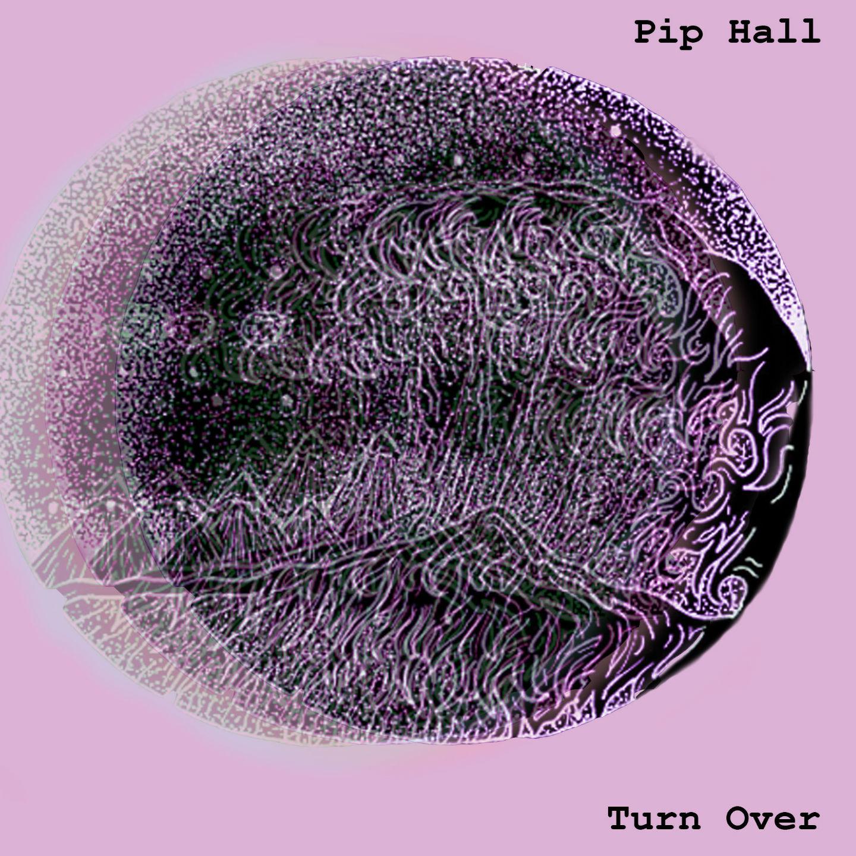 Pip Hall TO website image.jpg