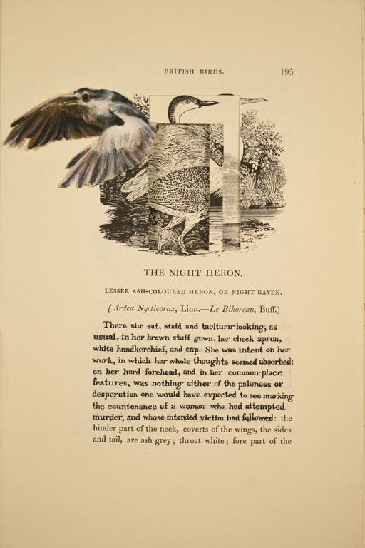 The Night Heron (Grace Poole)