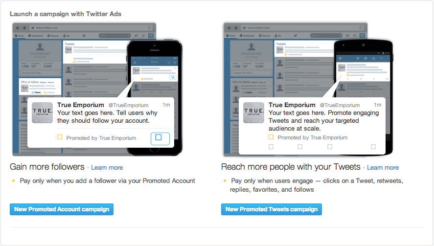 twitter promoted account campaign
