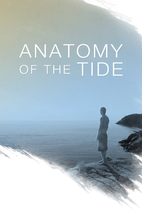 anatomy of the tide.jpg
