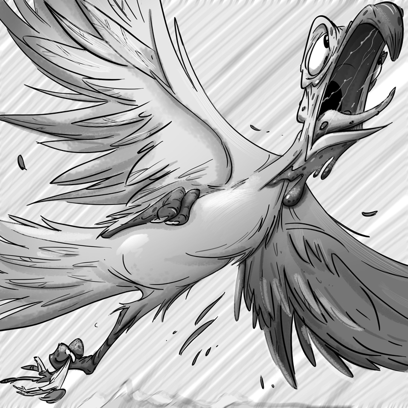 Flying Turkey.jpg