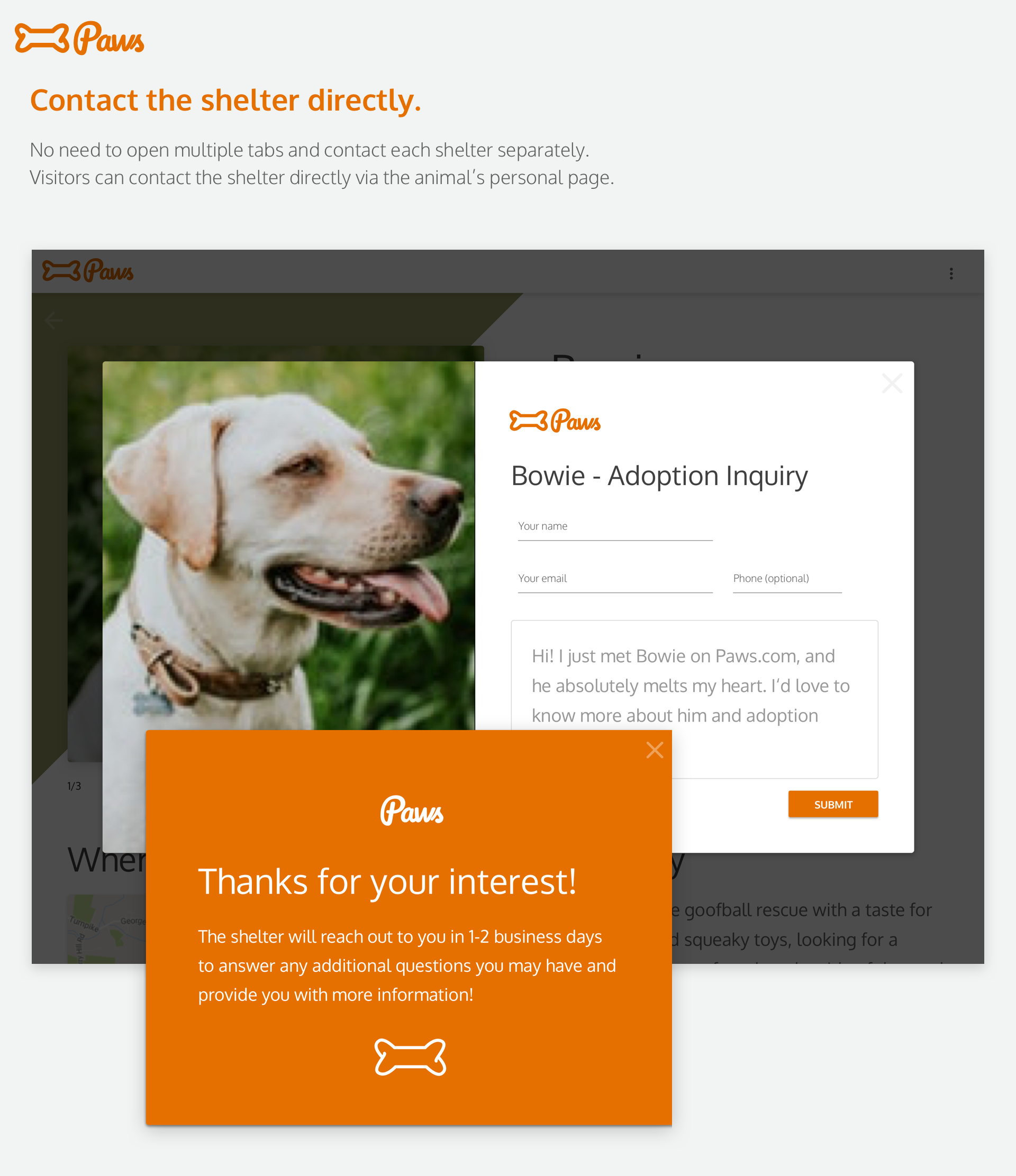 emily-ziegelmeyer-design-adoption-title copy 7.png