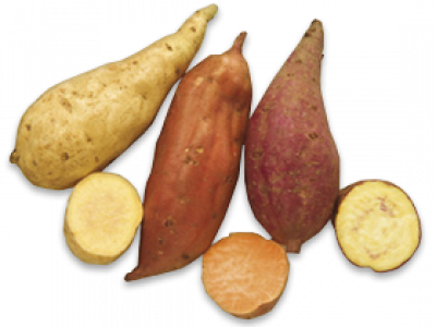 for more delicious ways of using root veg:  CLICK HERE