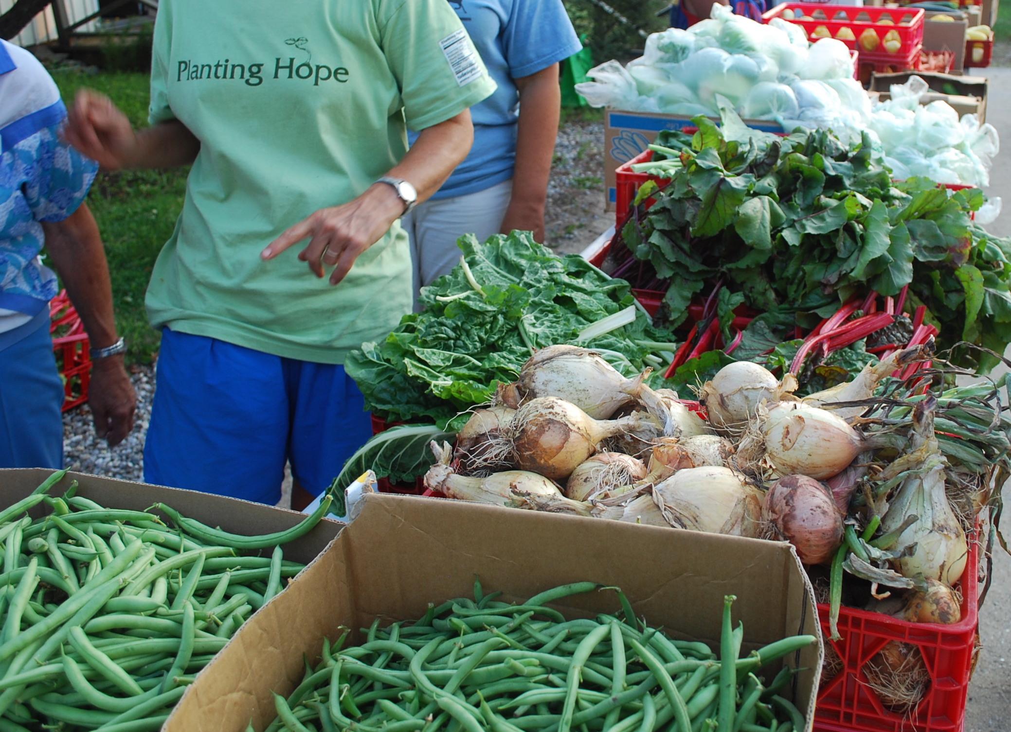 Harvest Dinner 2011 109.jpg