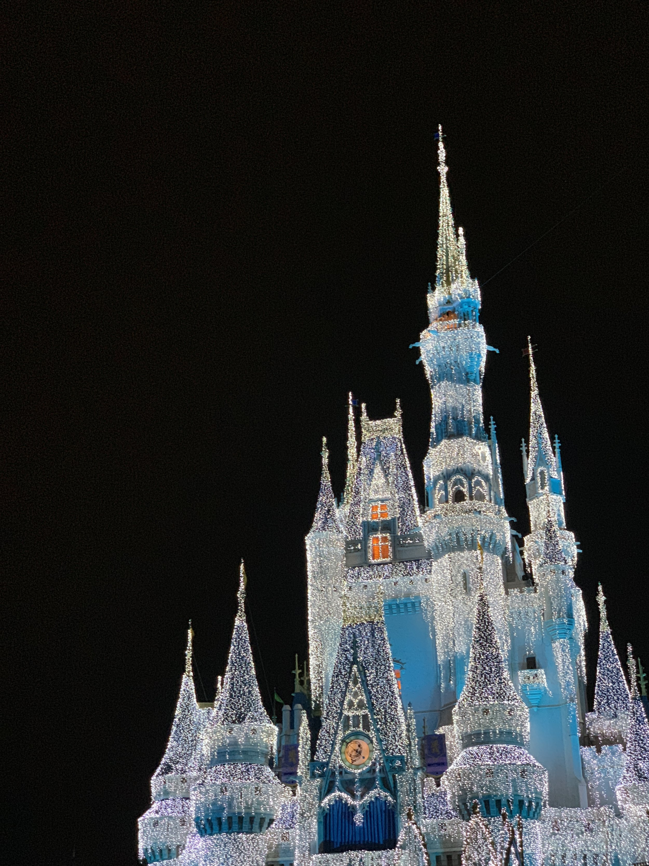 The gorgeous icy castle.