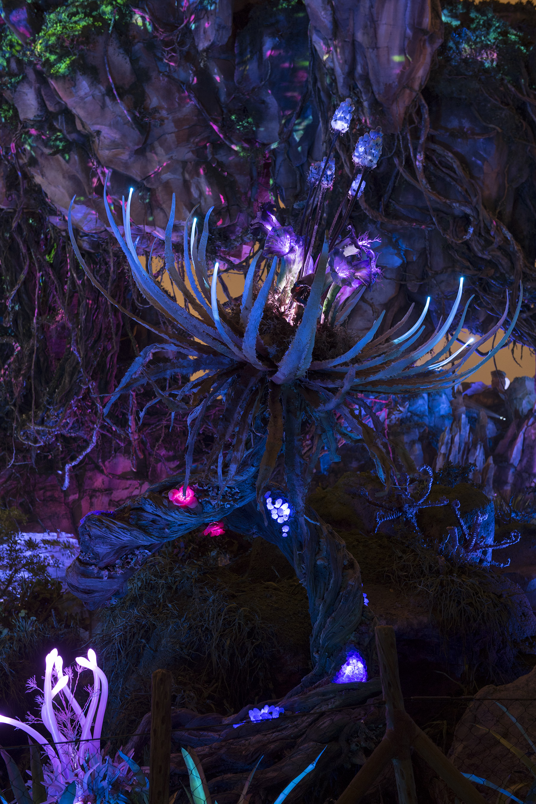 Bioluminescent plants. (Photo credit: Disney)