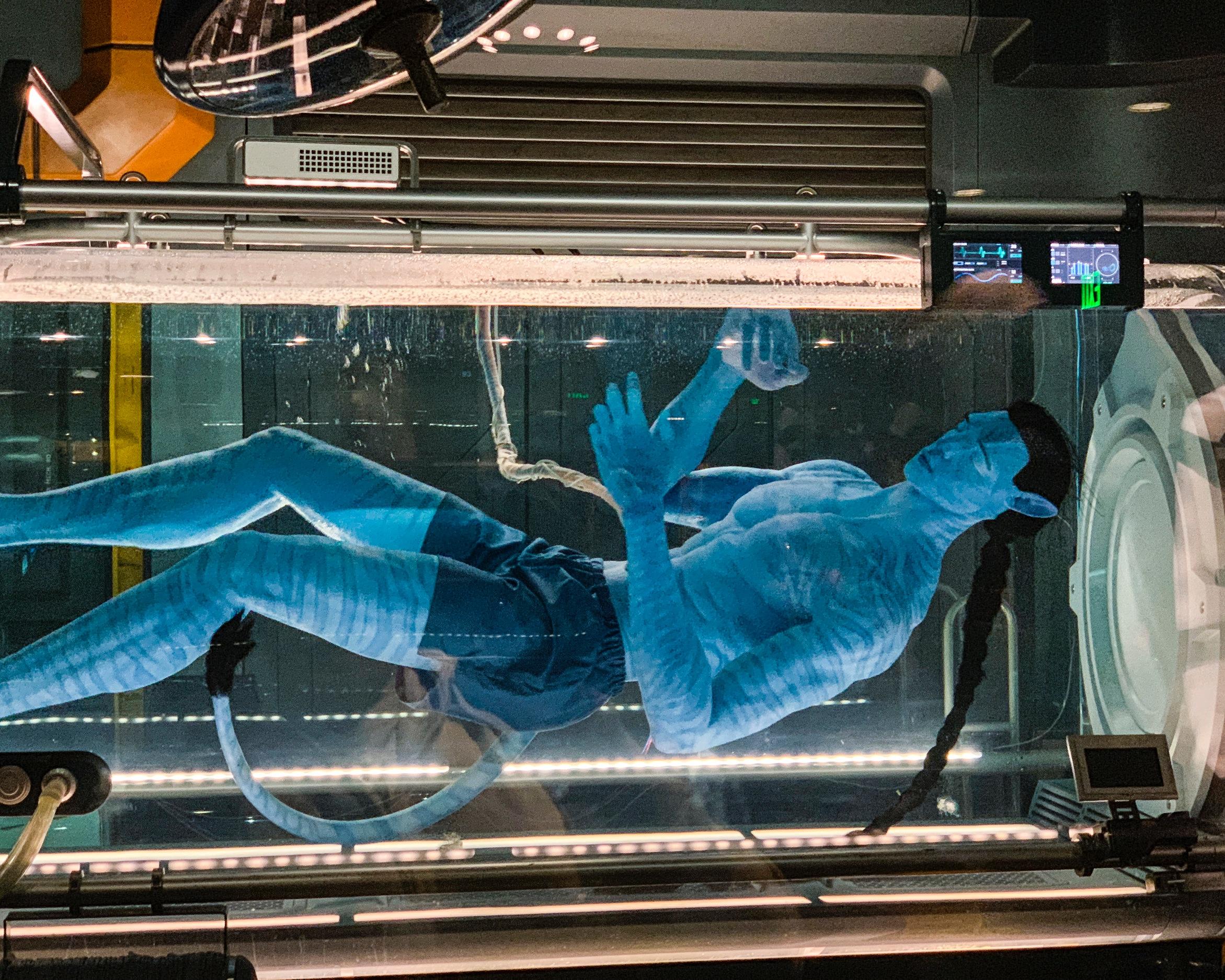 An Avatar on display.