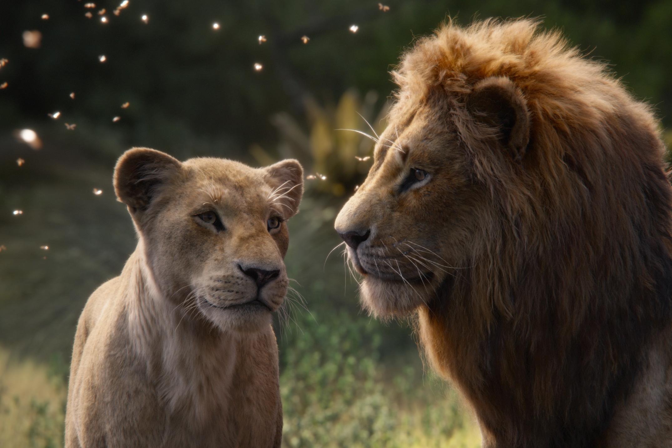 Simba (Glover) and Nala (Knowles-Carter) feeling the love tonight.