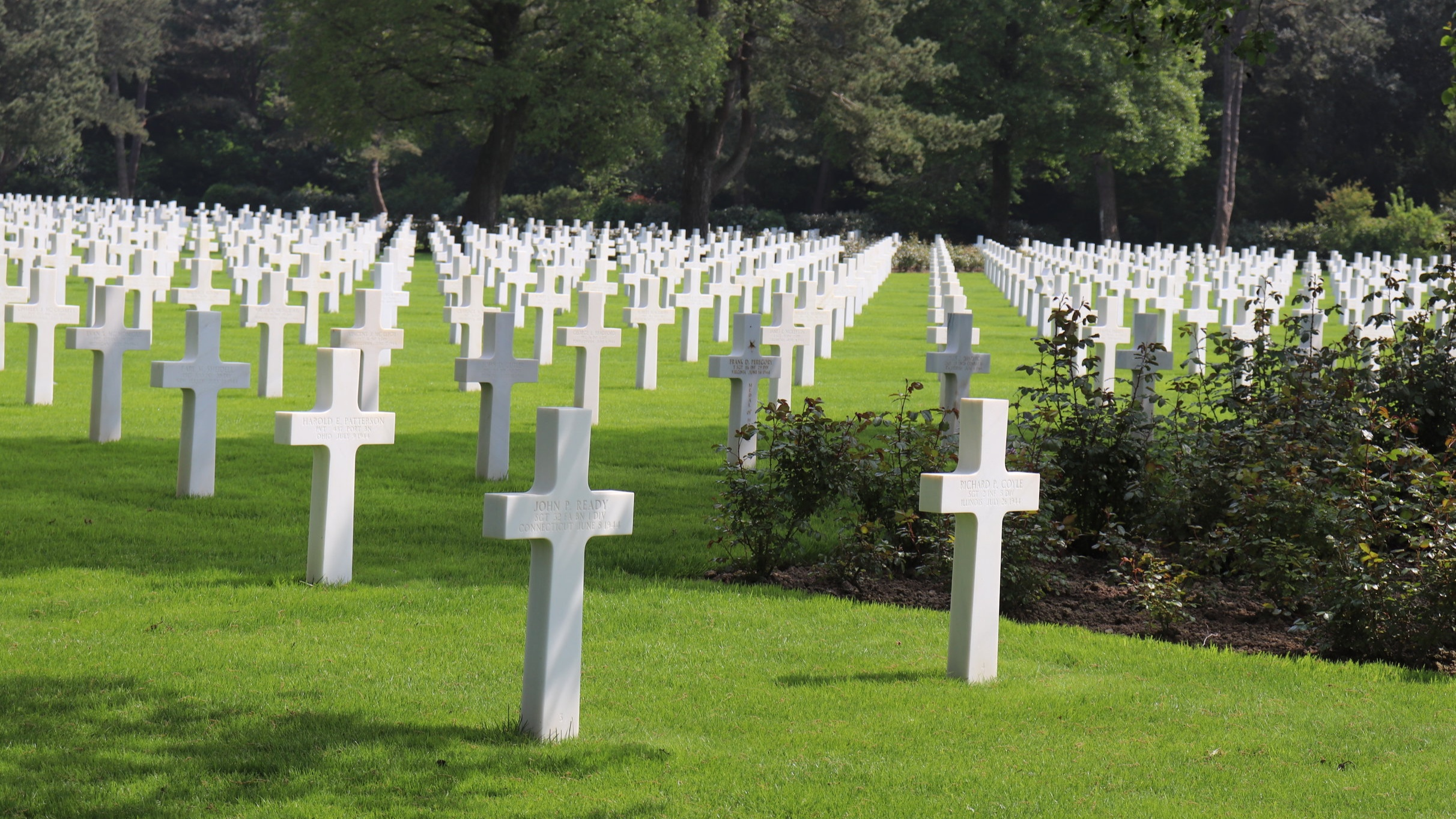 A view of just some of the rows of graves.