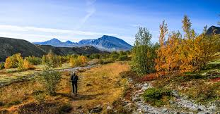 Hiking in the Rondane mountains, fall colors