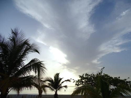 west coast island sunsets