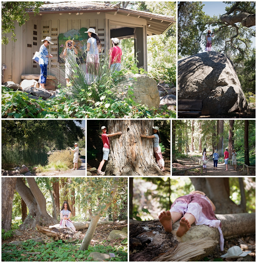 Botanical Gardens, and the kids first sighting of a coastal redwood tree. http://www.sbbg.org/