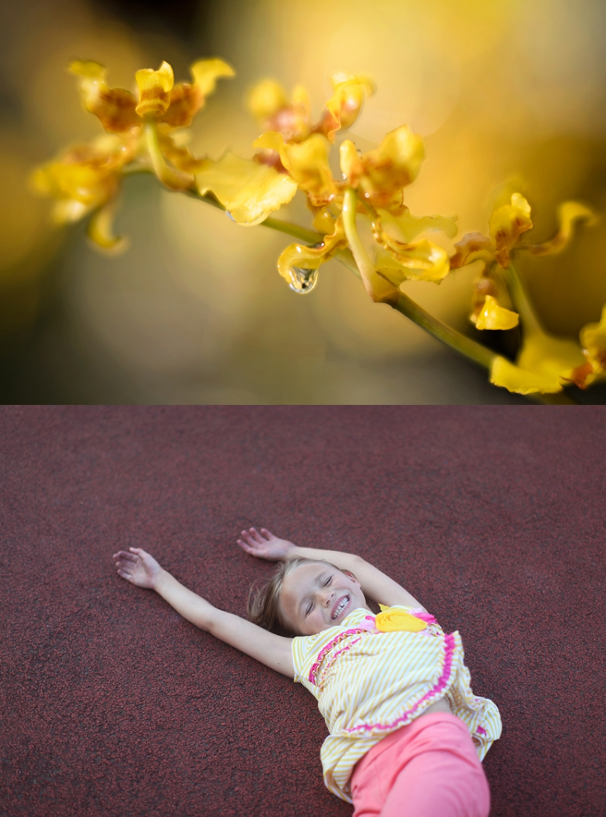 Phyllis Meredith Photography Top Image  Lili Love Photography Bottom Image
