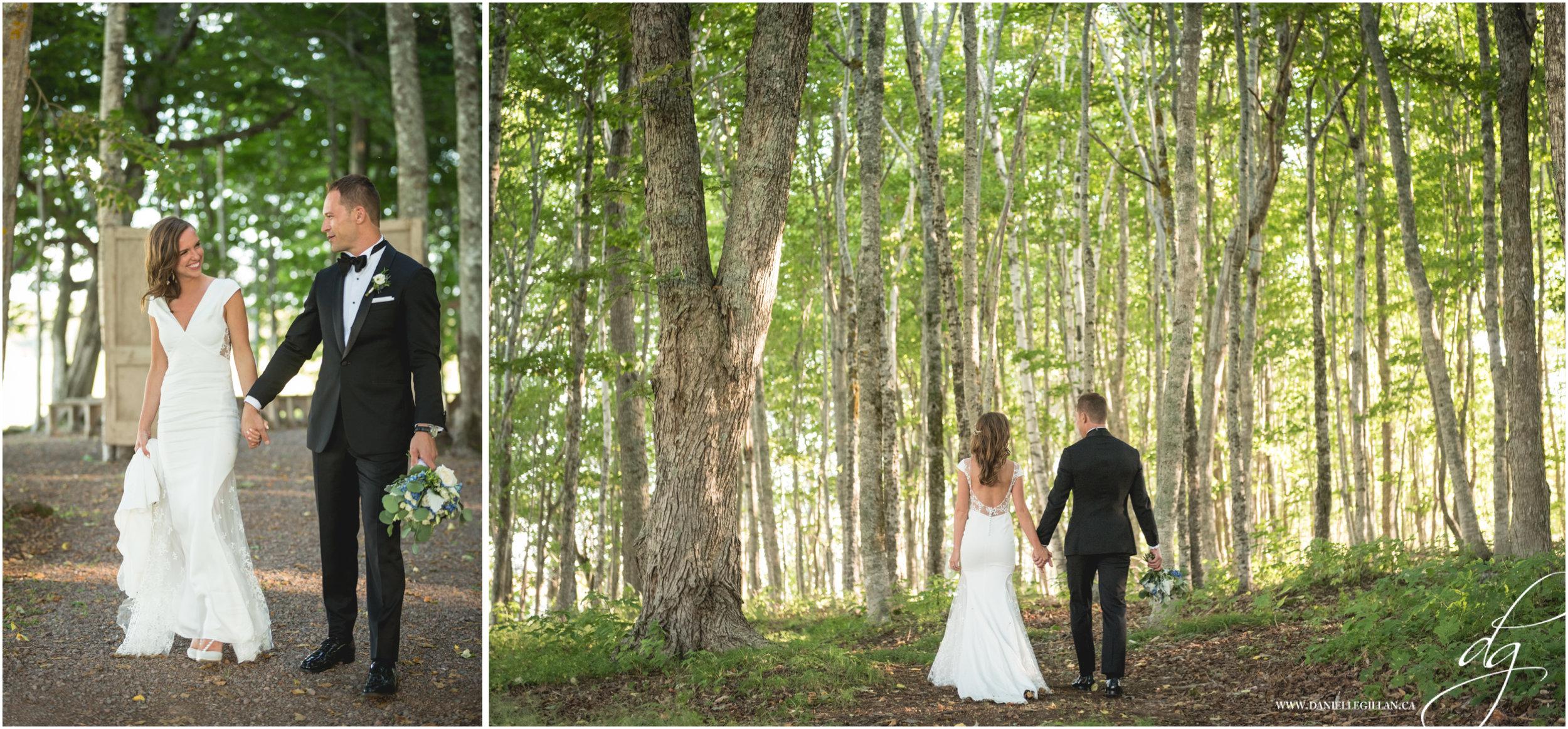CDspread woods.jpg