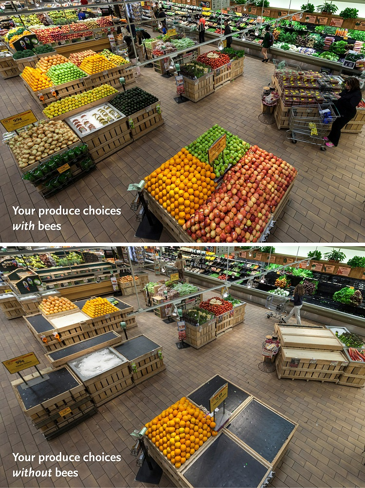 See more at:  Whole Foods Market .