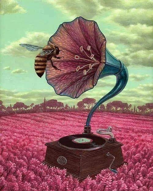 Flowers are music to bees...