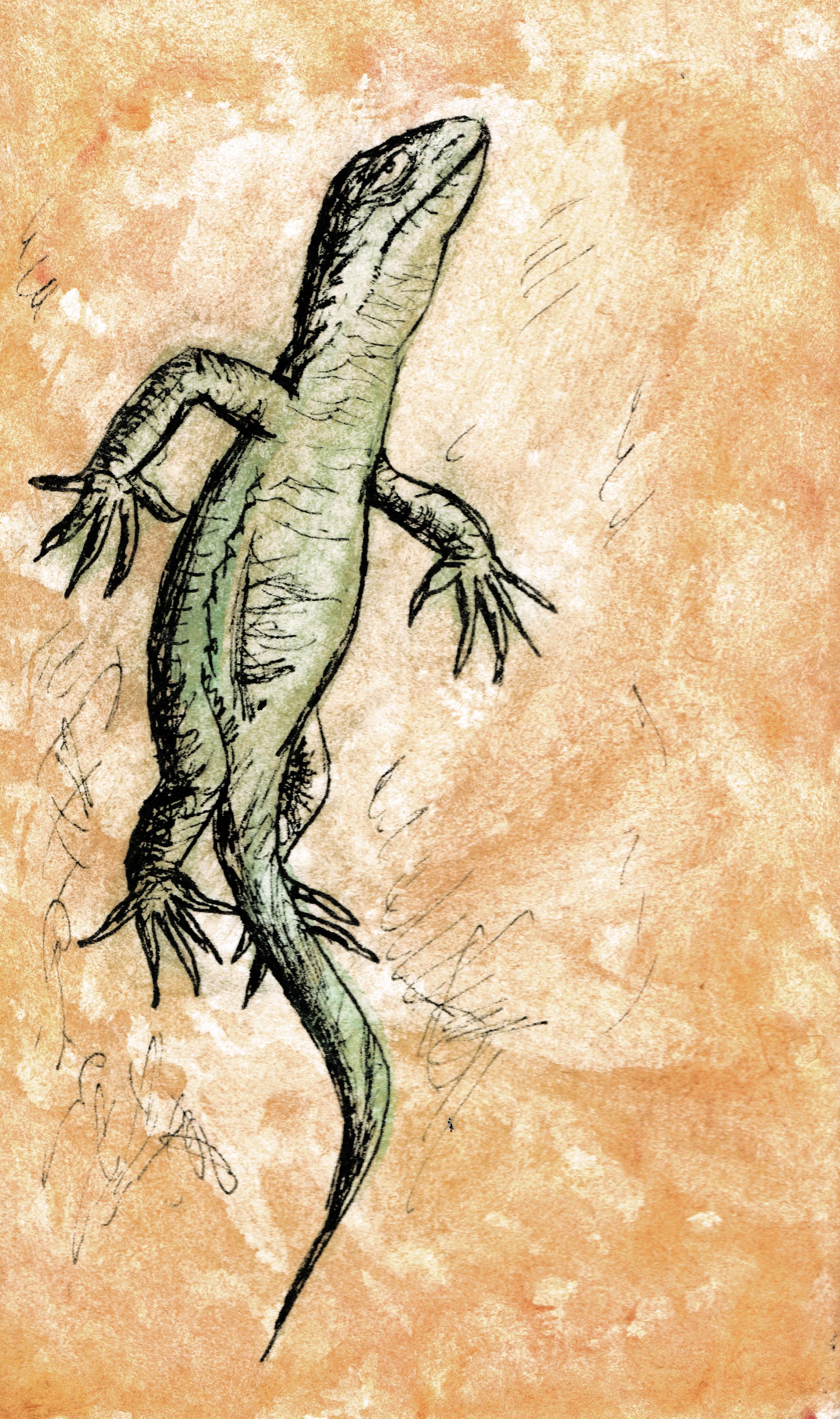 Bill the Lizard.jpg