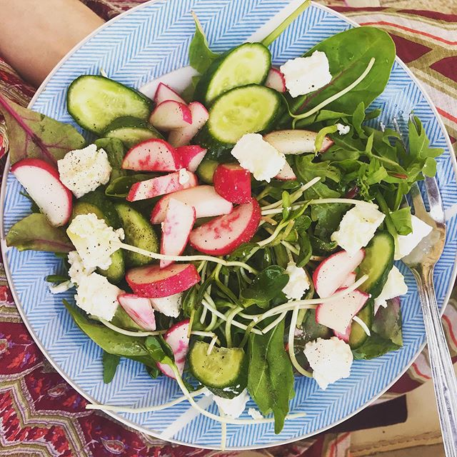 Composing a salad is a fun way to be creative and enjoy the health benefits of a variety of vegetables. Pictured here are mixed greens, sunflower seed sprouts, sliced radishes and cukes, goats milk feta cheese, and a lime-olive oil vinaigrette with s+p. Easy, peazy! Comment below on your favorite salad 🥗ingredients 👇