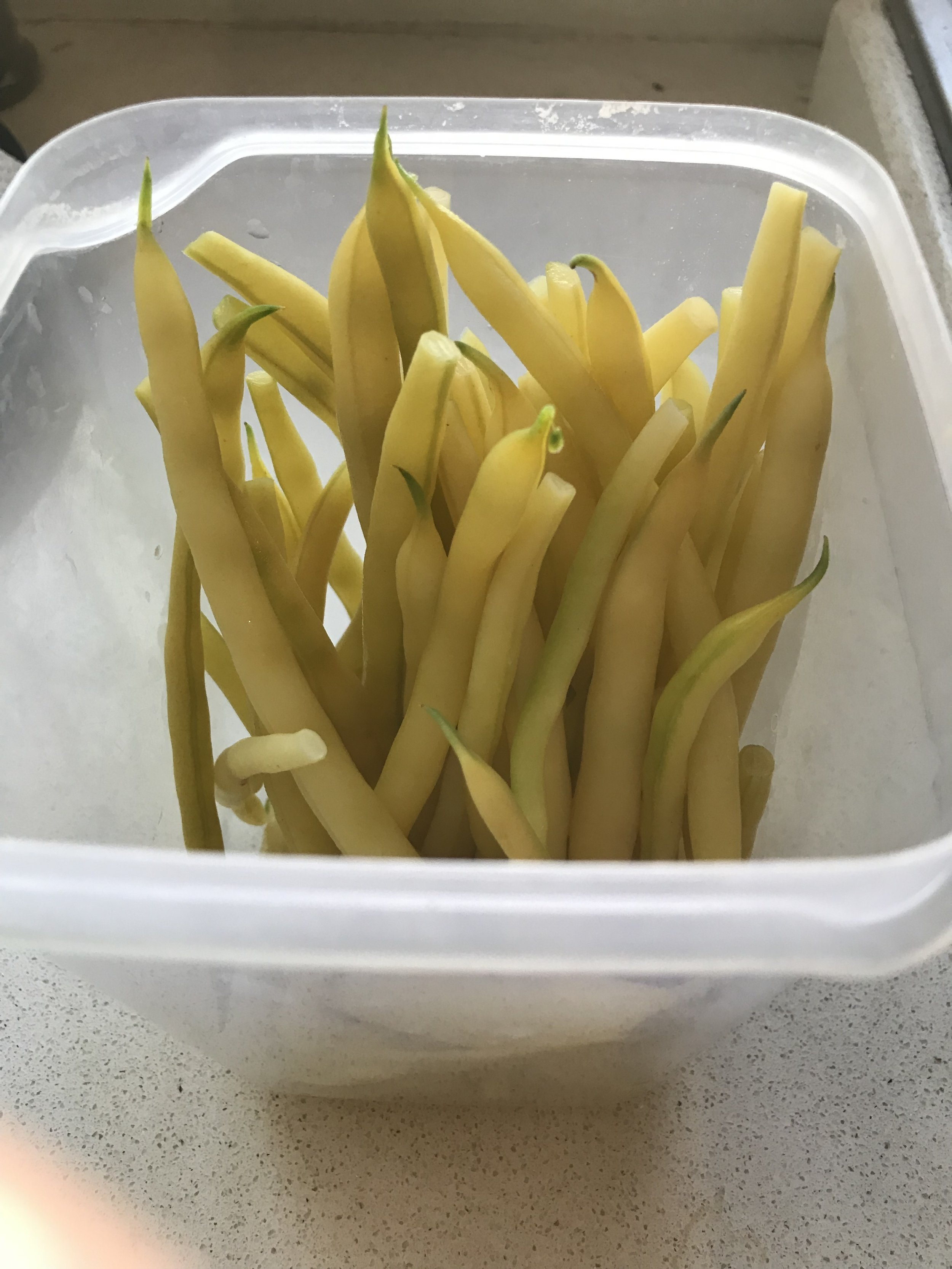 Storing cooked beans in an airtight container