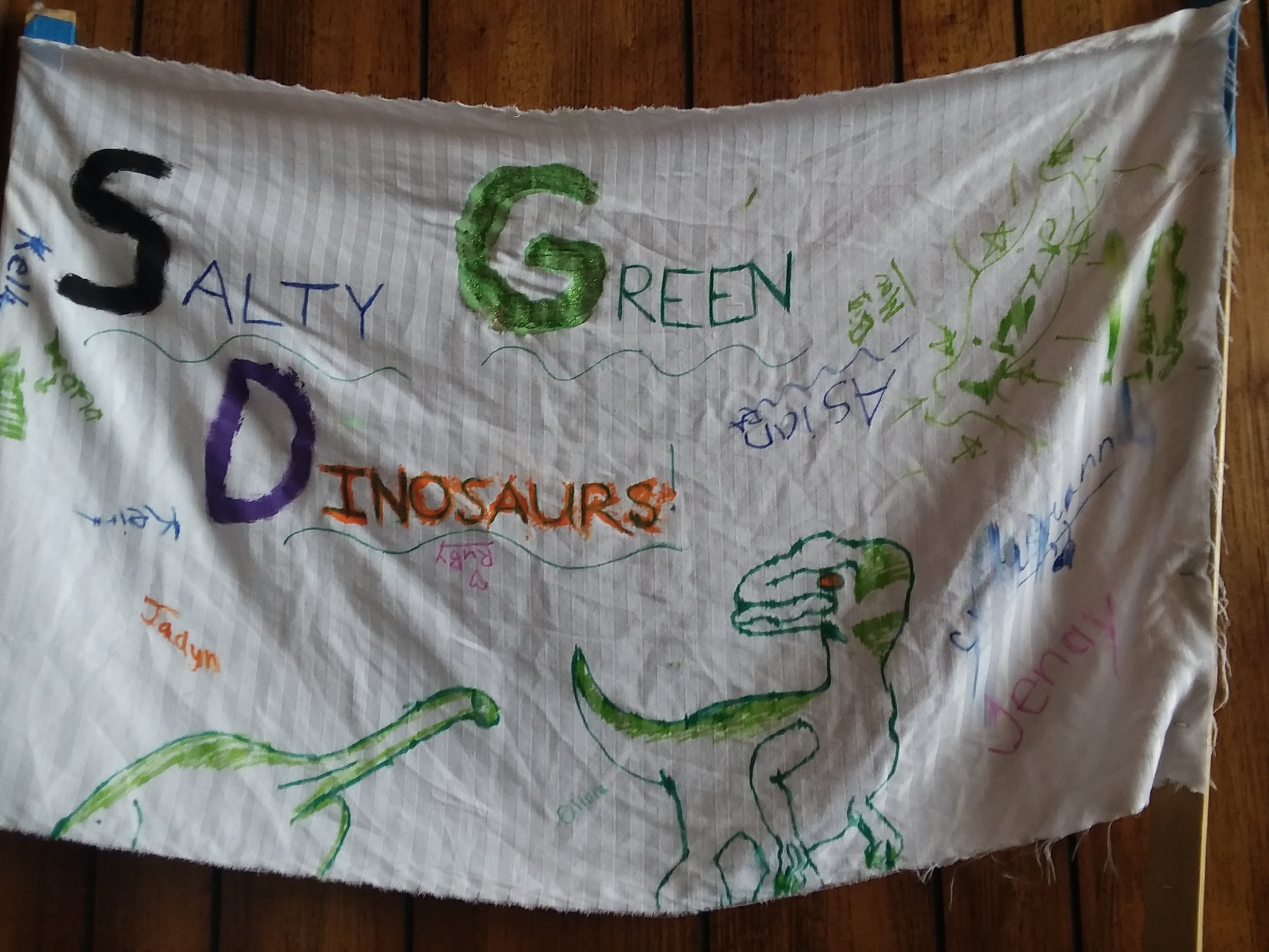 The Salty Green Dinosaurs - Lead by Jenay Zelinka and Kelly Carroll (Cabin 17) - Fourth Place!